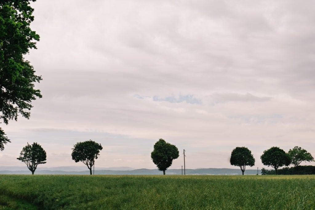 Die Umgebung von Gut Altenrode eignet sich perfekt als Location für ein Paarshooting.