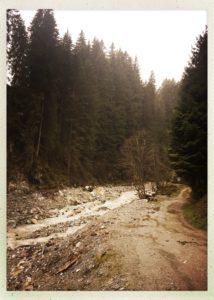 Nasse Straße im Tuxertal bei feinstem Nieselregen.
