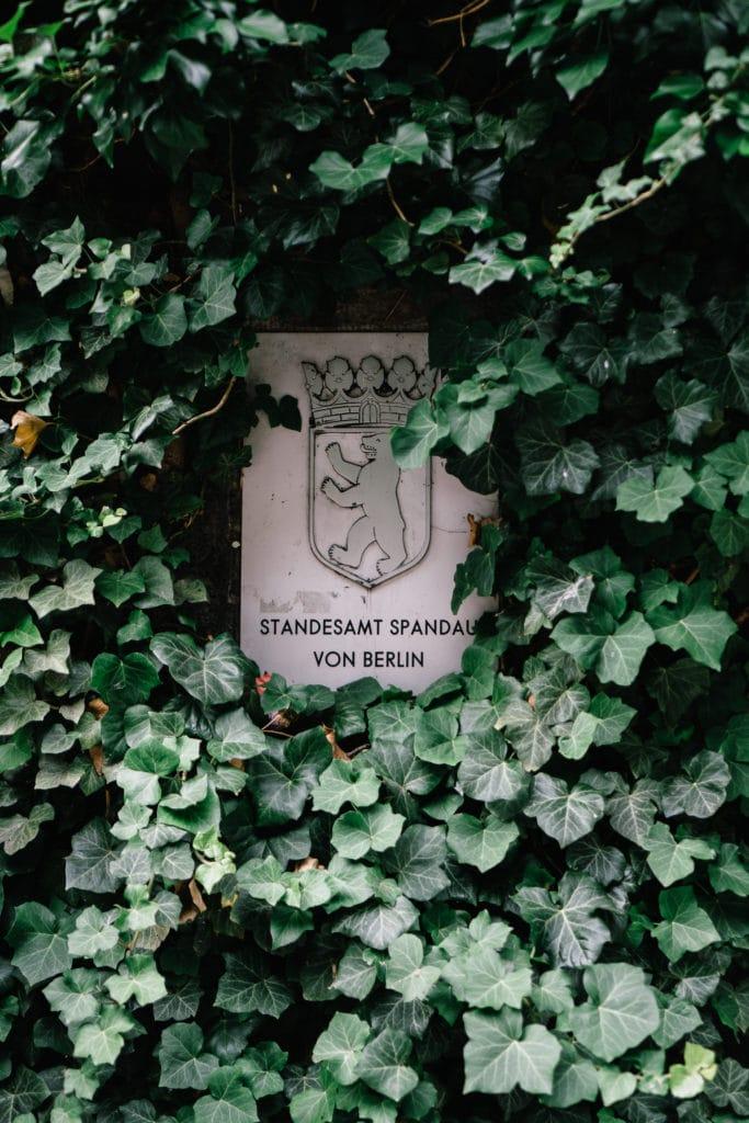 Standesamt Spandau Emblem mit Efeu-Wand