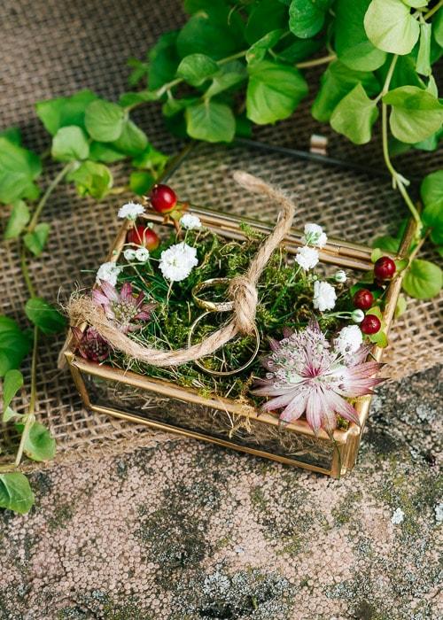 Hochzeitsringe in Szene gesetzt von Christina Harms Fotografie