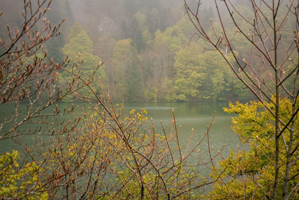 Ausblick auf den ersten der drei Seen auf der Wanderung im Elsass