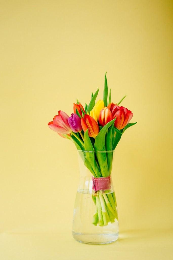 Einfache frühe Tulpen in der Vase